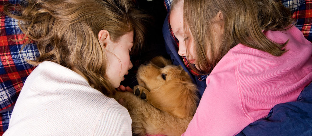 When camping with a dog where does he sleep? Right with you and your family.