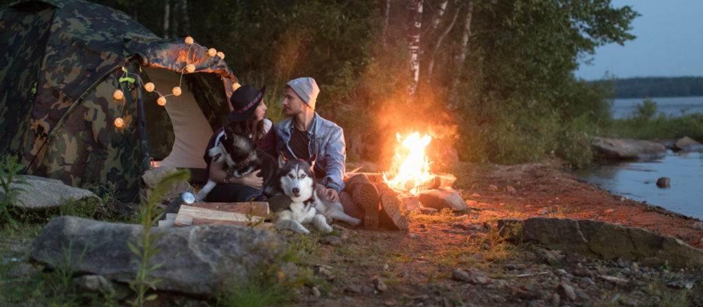 Camping with dogs in California is fun, easy, and super inexpensive!