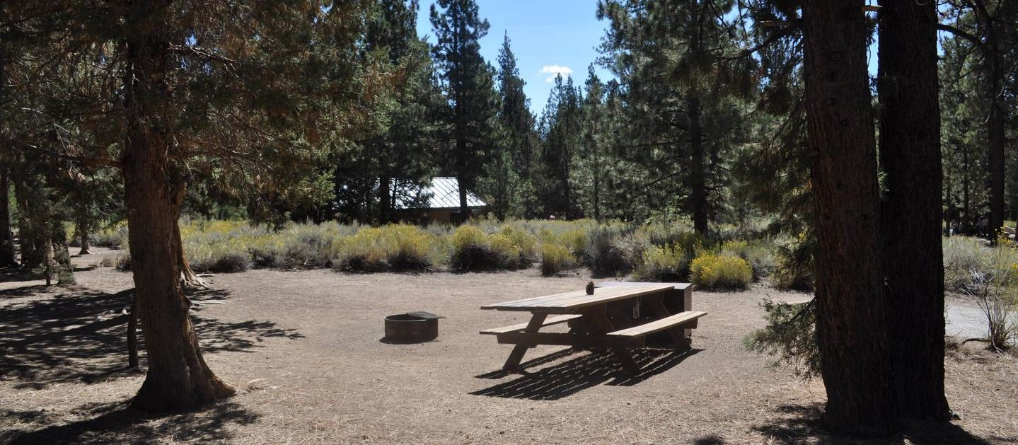 A view of what you might expect your campsite to look like if you decide to book your stay at Serrano.