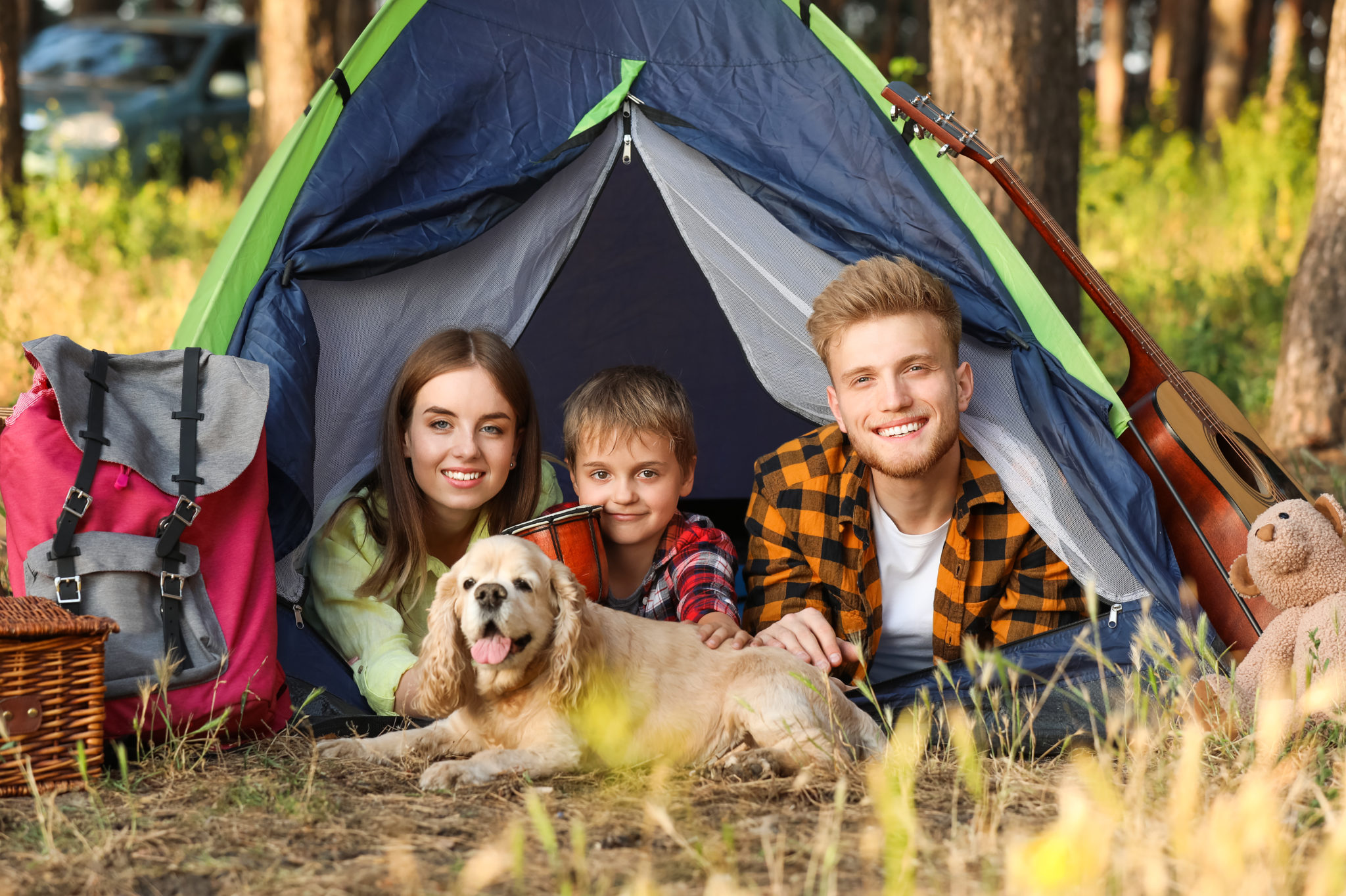 Camping Bed for Dogs