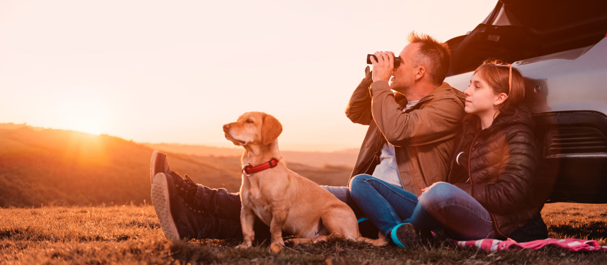 Where Can I Take My Dog Camping?