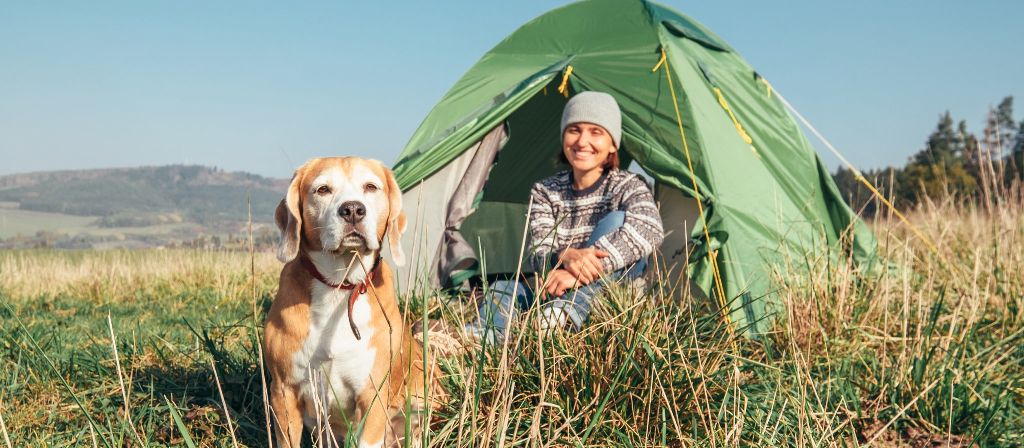 State Parks That Allow Dogs